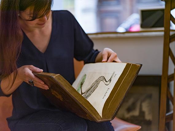 Expertise de livres anciens
